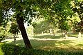® S.D. PARQUE DE MADRID (EL RETIRO) REGANDO - panoramio (3).jpg