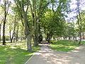 Łask, Park Miejski-008.JPG