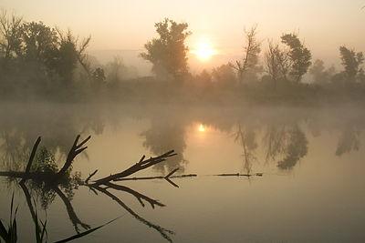 Барви літнього ранку.jpg