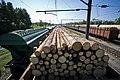Вагон с древесиной на станции Лянгасово под Кировом.JPG