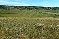 Вид в юго-восточном направлении - panoramio (11).jpg