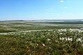 Вид с горы Даминтау в южном направлении - panoramio.jpg
