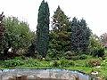 Двор. Фото Виктора Белоусова. - panoramio.jpg