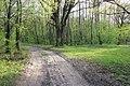Дорога - panoramio (1257).jpg