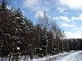 Зима - panoramio - Vadim Manuylov.jpg