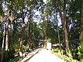 Минеральный парк, объекты парка (центральная аллея), Старая Русса.jpg