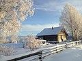 На Исаковой горе зимой (д. Исаково).JPG