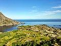 Норвегия - panoramio (126).jpg