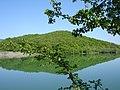 Озеро в с. Поляна, Куйбишевське л-во.jpg