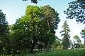 Парк в селі Лука-Мелешківська DSC 4110.JPG
