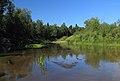 Река Илеть 15.jpg