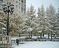 Снежное спокойствие - panoramio.jpg