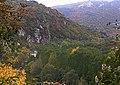 Черепишки манастир - поглед от пътя.jpg