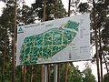 Черняевский лесопарк - panoramio.jpg