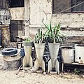 قذائف تم تحويلها لأصيص نباتات في عربين بريف دمشق.jpg