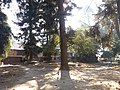 श्लेष्मान्तक वन (मृगस्थली) 02.jpg