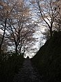 うつぶな公園 - panoramio (5).jpg