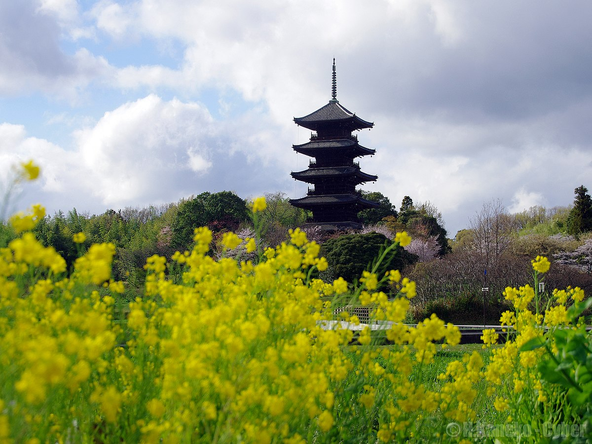 備中国分寺 (Bitchu Kokubun-ji) 07 Apr, 2013 - panoramio.jpg