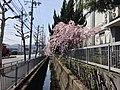 南広町バス停 - panoramio.jpg