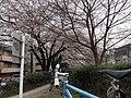 天神川万寿寺 - panoramio.jpg