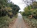 東京港野鳥公園 - panoramio (17).jpg