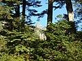 槍沢ロッジから見た槍ヶ岳 2013-09-17 - la Monto Jari de Jarisaŭa Hoteleto - Mt. Yari from Yarisawa Lodge - panoramio.jpg