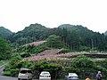 水子地蔵寺 - panoramio.jpg