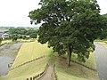 甲斐銚子塚古墳 2008.07.26 - panoramio (3).jpg