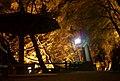香嵐渓ライトアップ (愛知県豊田市足助町) - panoramio - gundam2345 (2).jpg
