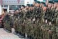 02017 0054 WOT-Soldaten, Karpatenvorland-Brigade.jpg