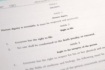 350px-04CFREU-Article2-Crop.jpg