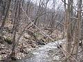 080323 Hickory 007-Creek.JPG