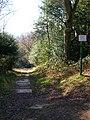 101 Steps, Rusthall Common - geograph.org.uk - 693799.jpg
