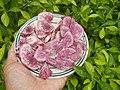 1417Cuisine foods delicacies of Bulacan 22.jpg