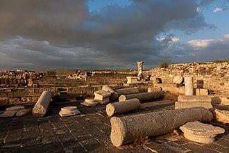 Hippos - Ruins of Sussita