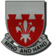 169th Engineer Battalion.png