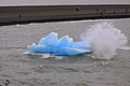 180 - Torres del Paines - Iceberg - Janvier 2010.JPG