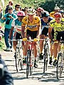 1991 Giro d'Italia Stage 13 Savigliano-Sestriere, Mario Cipollini.jpg