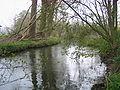 2010-04-20 Spenge 179.jpg