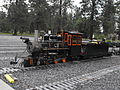 20110627 Live Steamer Crisp Yard Train Mtn. 015.JPG