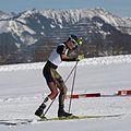 20170212 Nordic Combined COC Eisenerz 2661.jpg