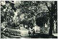 20704-Wittenberg-1917-Im Stadtpark-Brück & Sohn Kunstverlag.jpg