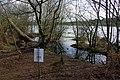25.3.16 Delamere Forest 34 (25761934800).jpg