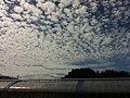 2 Chome Jindaiji Higashimachi, Chōfu-shi, Tōkyō-to 182-0012, Japan - panoramio (2).jpg