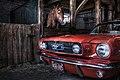 2 Mustangs.jpg