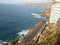 38400 Puerto de la Cruz, Santa Cruz de Tenerife, Spain - panoramio (203).jpg