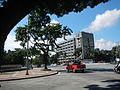 5922jfQuezon Memorial Coconut Elliptical Road Quezon Cityfvf 30.JPG