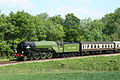 60163 Tornado on the West Somerset Railway at Nornvis Bridge near Lydeard St Lawrence 1 June 2009.jpg