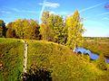 616. Museum-Estate Trigorskoye. Ladder to the ravine.jpg