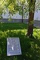 71-220-5077 Shevchenko Willow SAM 7234.jpg